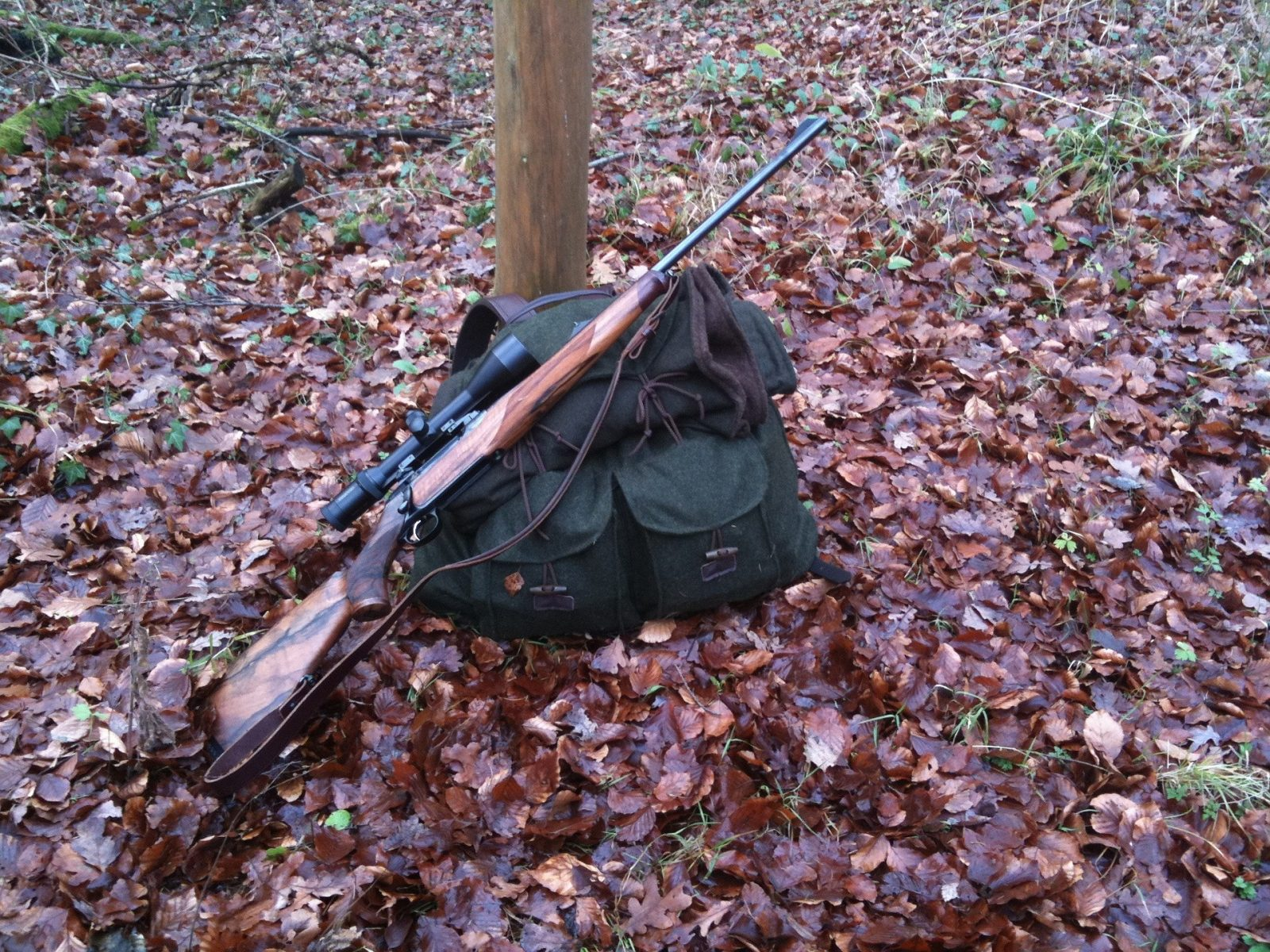 rifle 81661 1920